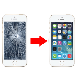 iPhone Repair Training